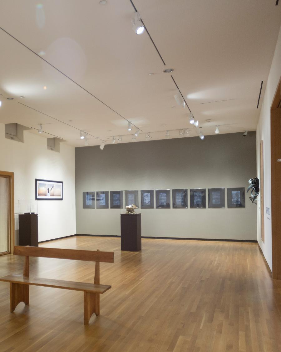"""Gallery Conversation: """"Tracing History, Picturing the Nation"""""""